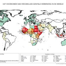 Prevalentie VGV 2016