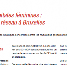 "Education, Santé : A ""new"" network on FGM in Brussels"