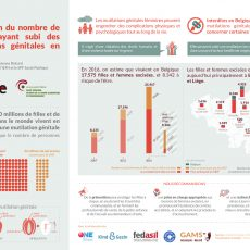 Prévalence femmes et filles concernées par les MGF en Belgique