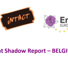 Shadow Report on Istanbul Convention implementation in Belgium