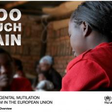 Too much pain: Female Genital Mutilation & Asylum in the European Union