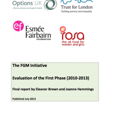 The	FGM Initiative	Evaluation of	the	First	Phase	(2010-­‐2013)	Final	report