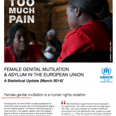Too Much Pain: Female Genital Mutilation & Asylum in the European Union A Statistical Update (March 2014)