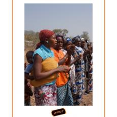 Verslag van de missie van INTACT in Guinee, februari 2014