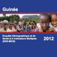 Guinée: Enquête Démographique et de Santé et à Indicateurs Multiples (EDS-MICS)