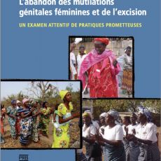 Abandoning Female Genital Mutilation / Cutting: an in-depth look at promising practices