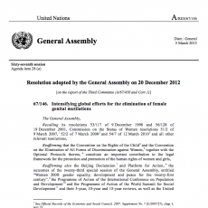 Resolution adopted by the General Assembly on 20 December 2012