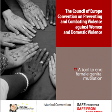 A tool to end female genital mutilation: Istanbul Convention