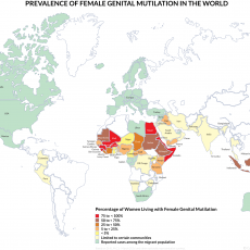 FGM Prevalence map, 2017