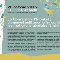 Conférence sur la Convention d'Istanbul