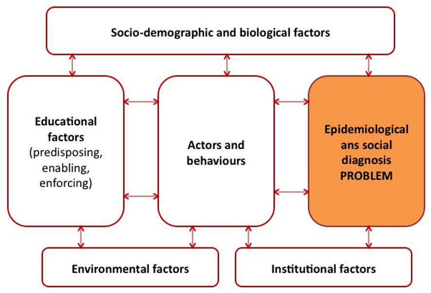 Figure 2: Diagnosis of the situational analysis